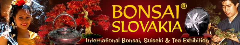 BONSAI SLOVAKIA - INTERNATIONAL BONSAI, SUISEKI @ TEA EXHIBITION