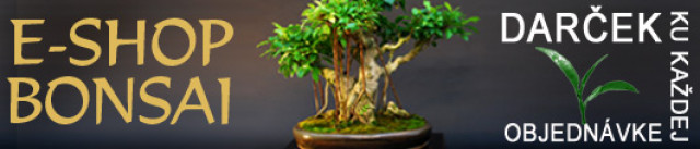 E-SHOP BONSAI