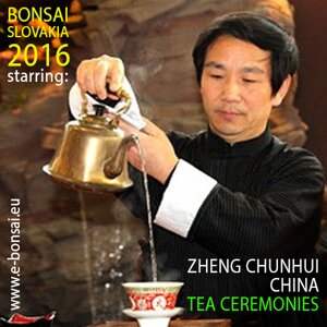 ZHENG CHUNHUI TAIJI CEREMONY TEA HOUSE